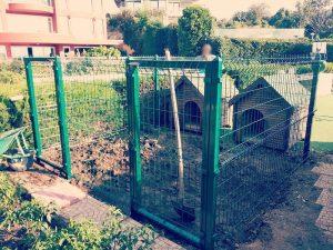 Büyük Bahçe Tel Örgü Köpek Kafesleri